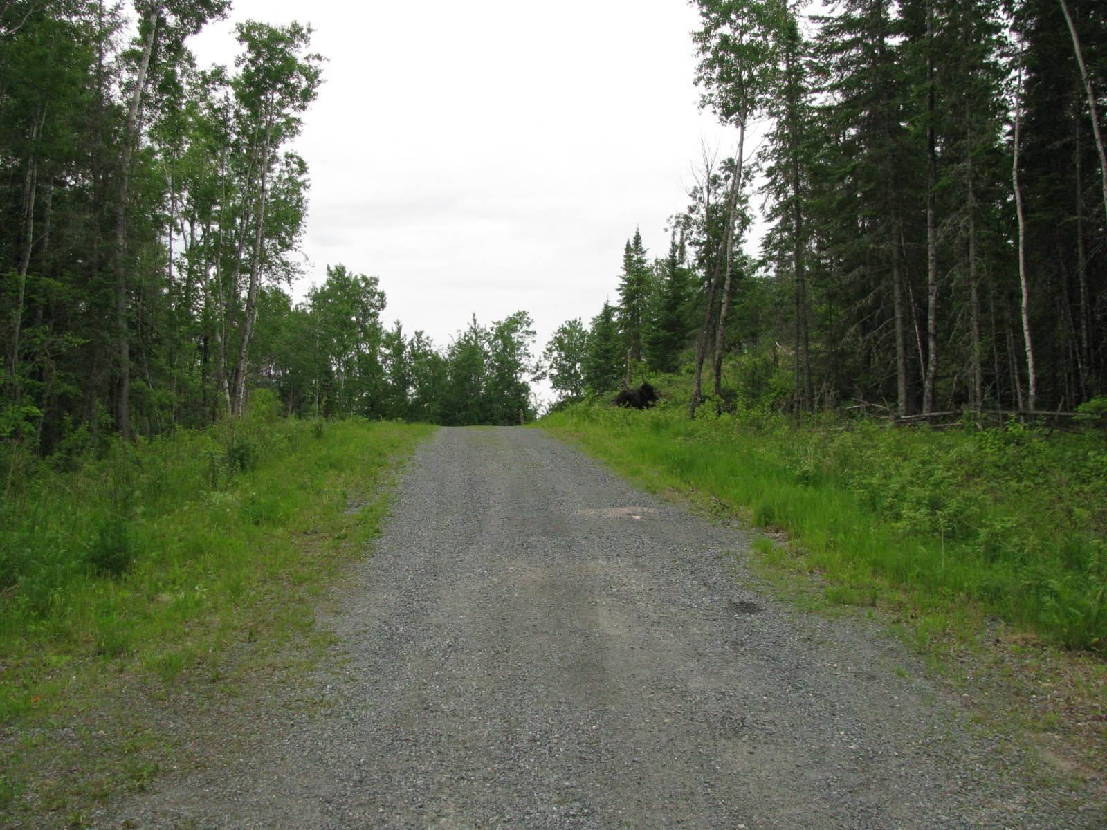 Lot 7 Molloy Ridge Road, Sioux Narrows, Ontario  P0X 1N0 - Photo 5 - TB180577