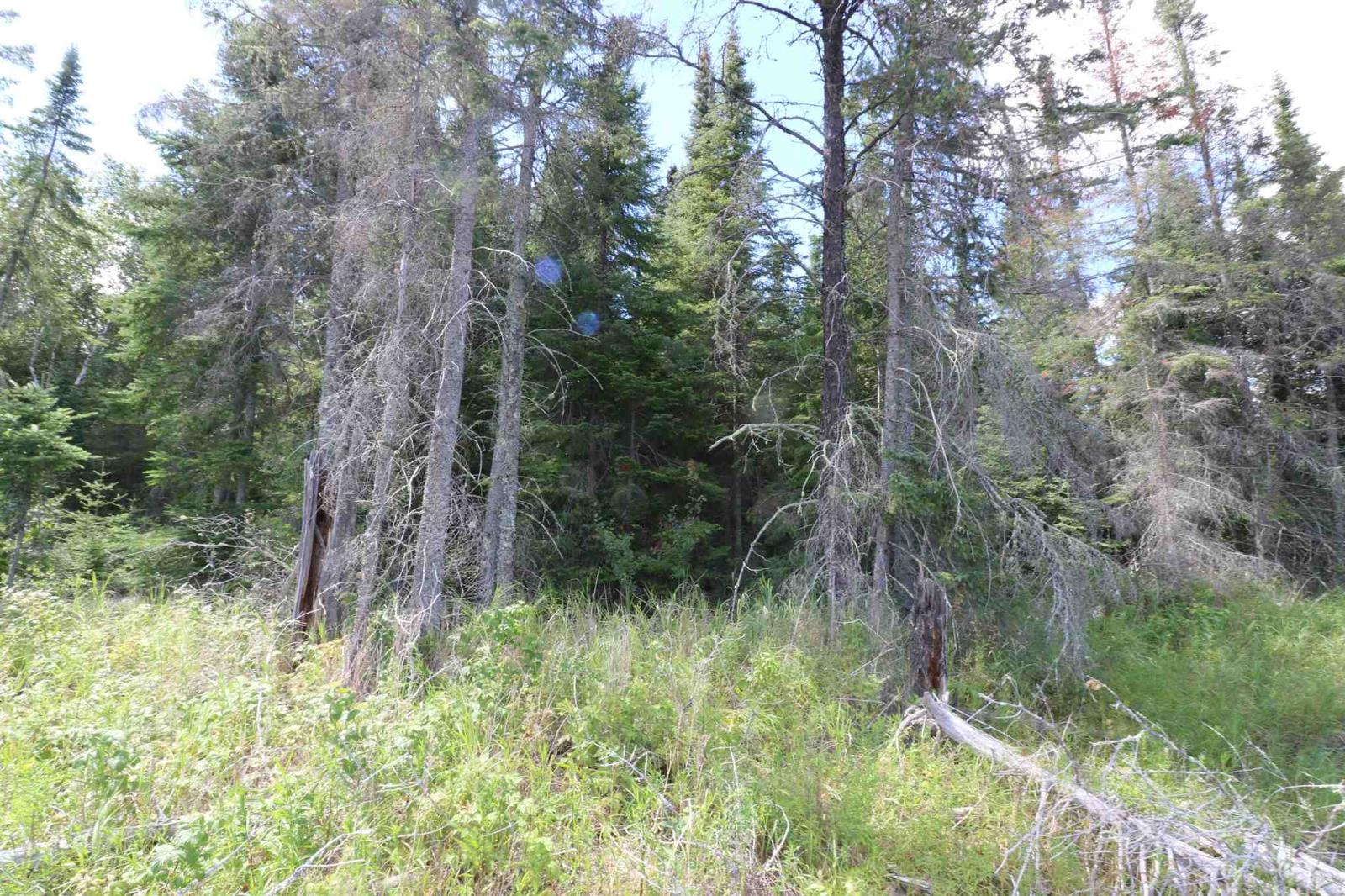 Part Lot 2 M127 Christie's Bay, Winnipeg River, Minaki, Ontario  P0X 1J0 - Photo 24 - TB201447
