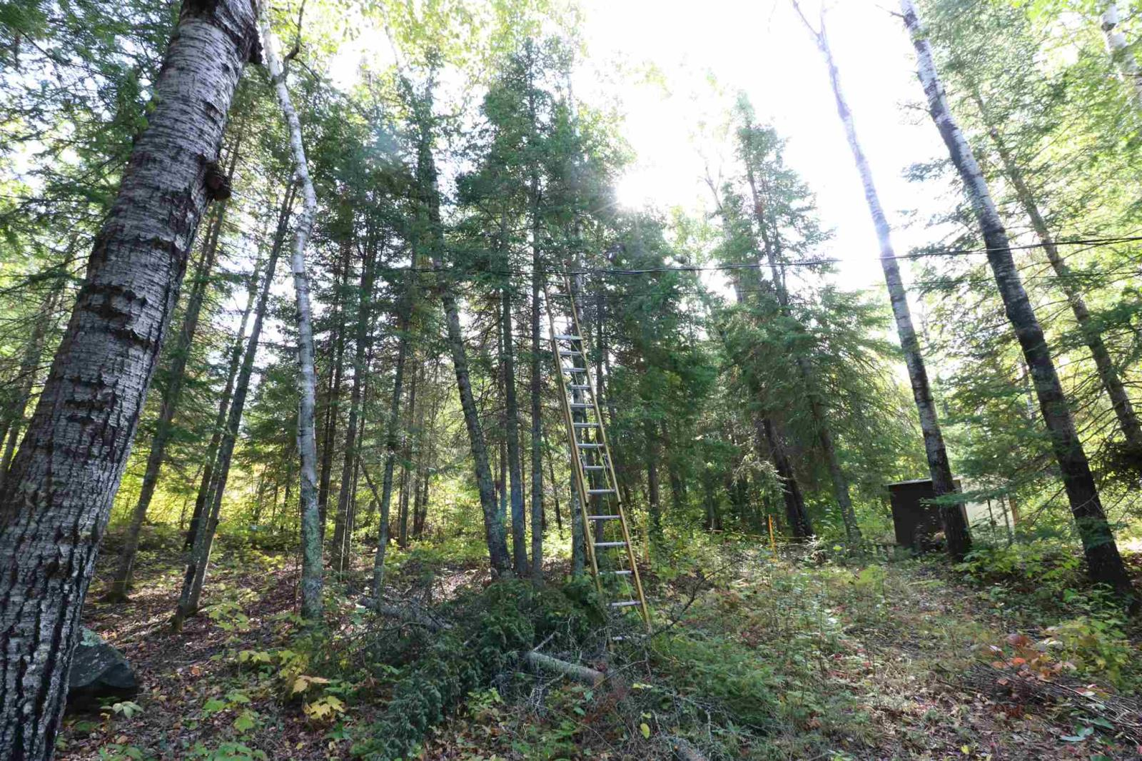 Lots 9-10 M464 Zig Zag Is, Clearwater Bay, Ontario  P0X 1S0 - Photo 31 - TB202366