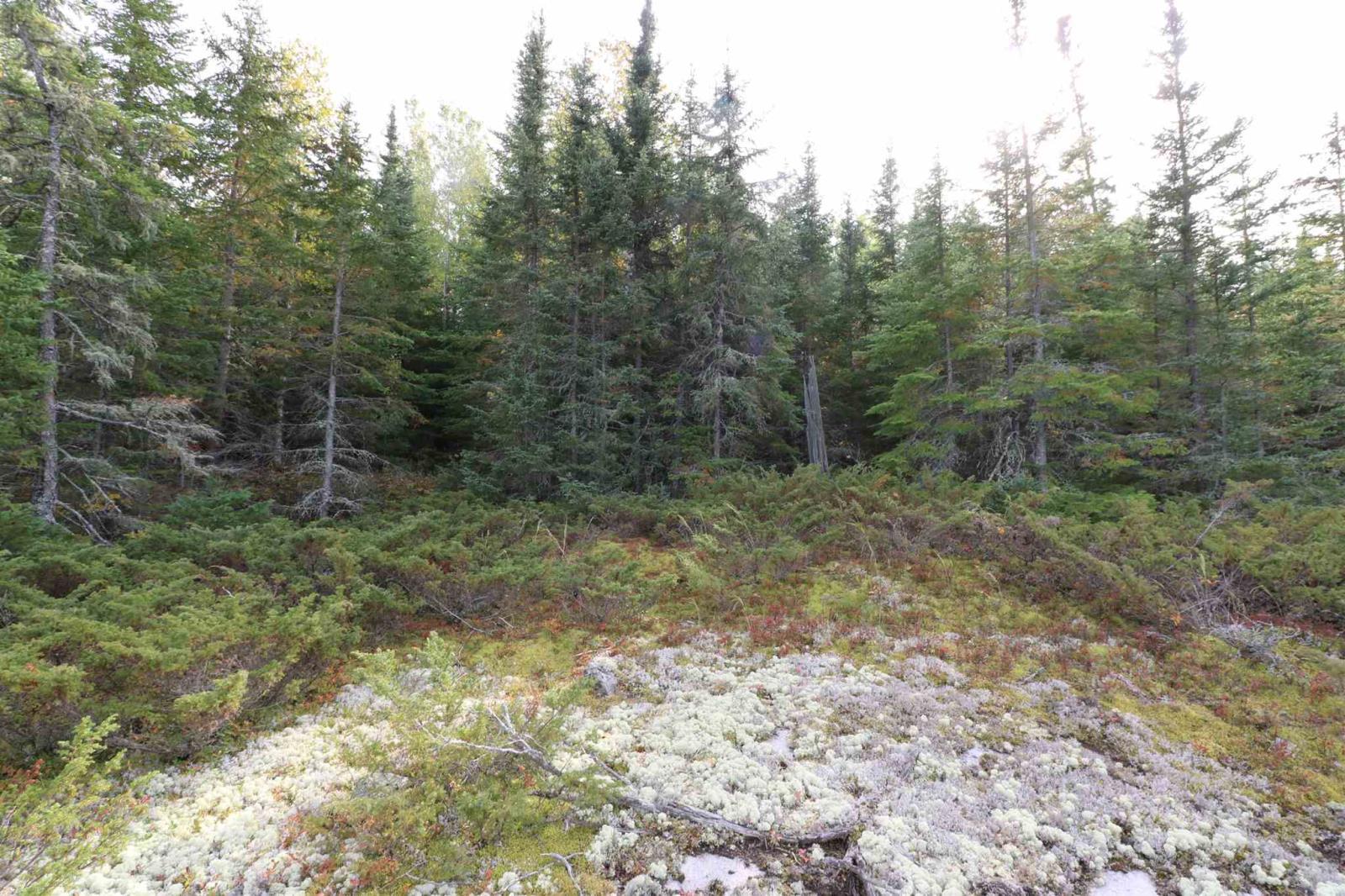 Location S818 Gun Lake, Minaki, Ontario  P0X 1J0 - Photo 24 - TB202424